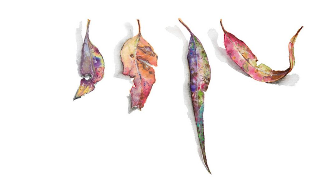 Delicate watercolour leaves by artist Tina Wilson