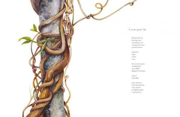 A year goes by: Poem by Nicholas Bennett, artwork of a vine by Tina Wilson