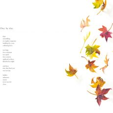 Illustration of autumn leaves falling by artist Tina Wilson for the poem Day by Day by Nicholas Bennett