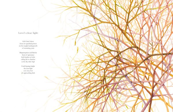 Loves Clear Light - a poem by Nicholas Bennett, with illustration of a tumbleweed by Tina Wilson